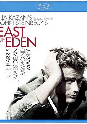 East of Eden's Poster