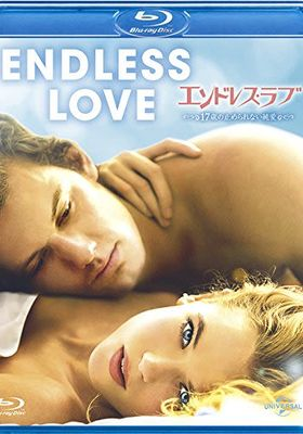 『エンドレス・ラブ~17歳の止められない純愛』のポスター
