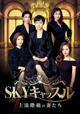 SKY Castle's Poster