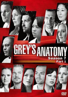 그레이 아나토미 시즌 7의 포스터