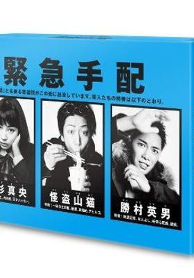 『怪盗 山猫』のポスター