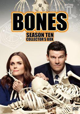 본즈 시즌 10의 포스터
