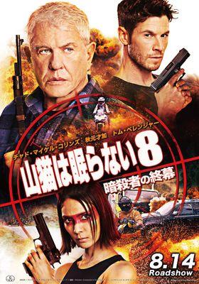Sniper: Assassin's End's Poster