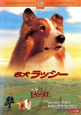 Lassie's Poster