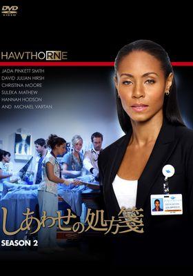 호손 시즌 2의 포스터