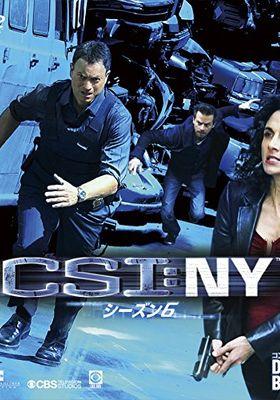 CSI: NY Season 6's Poster