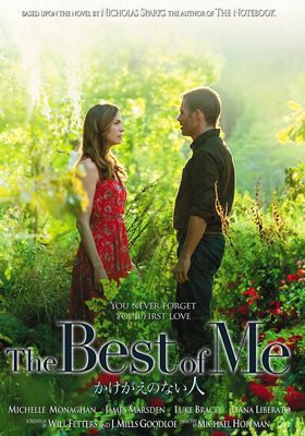 The Best of Me's Poster