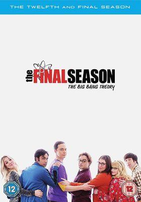 빅뱅이론 시즌 12의 포스터