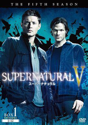 수퍼내추럴 시즌 5의 포스터