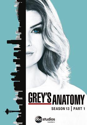 『グレイズ・アナトミー シーズン13』のポスター