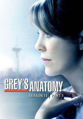 그레이 아나토미 시즌 11의 포스터