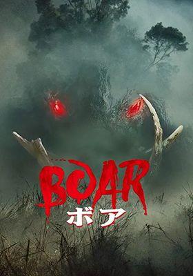 Boar's Poster